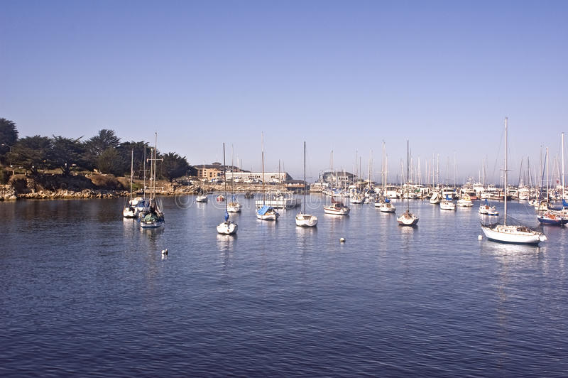 Yachten auf Monterey-Schacht lizenzfreies stockfoto