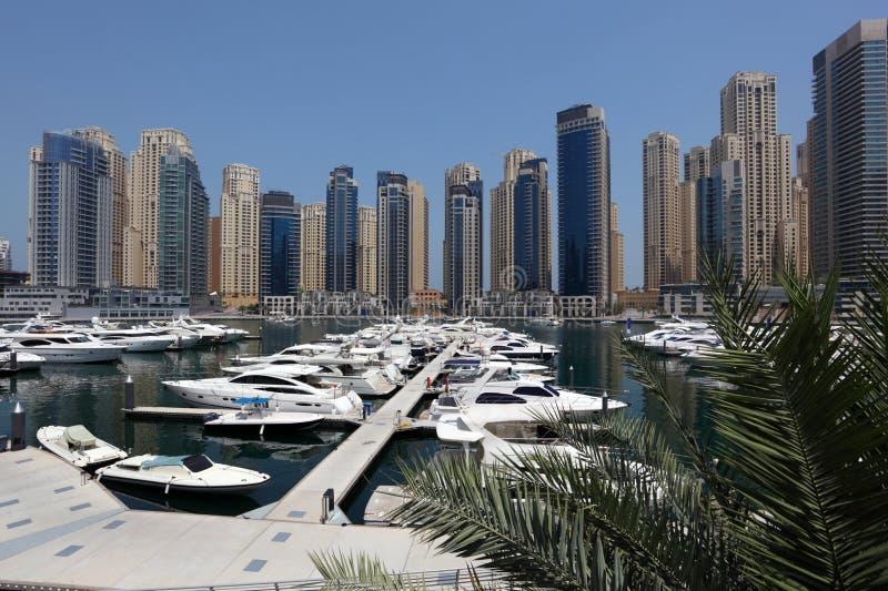 Yachten am Dubai-Jachthafen lizenzfreies stockfoto