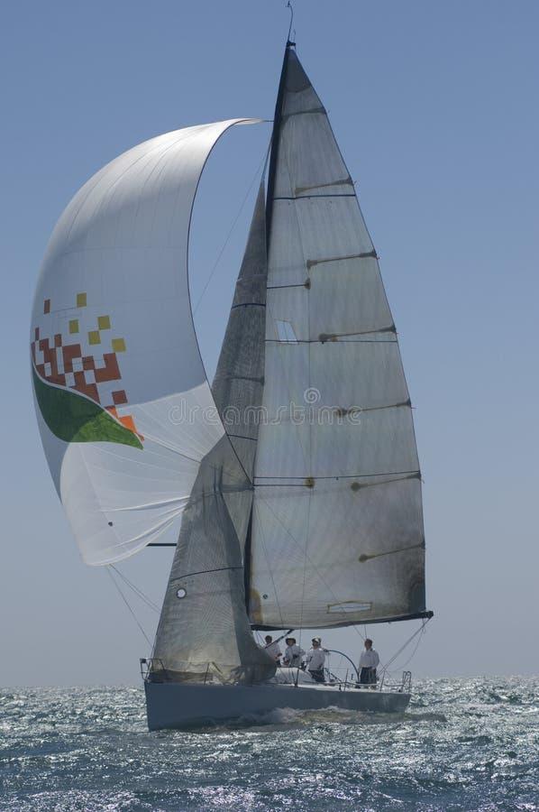 Yachten konkurrerar i Team Sailing Event royaltyfri fotografi