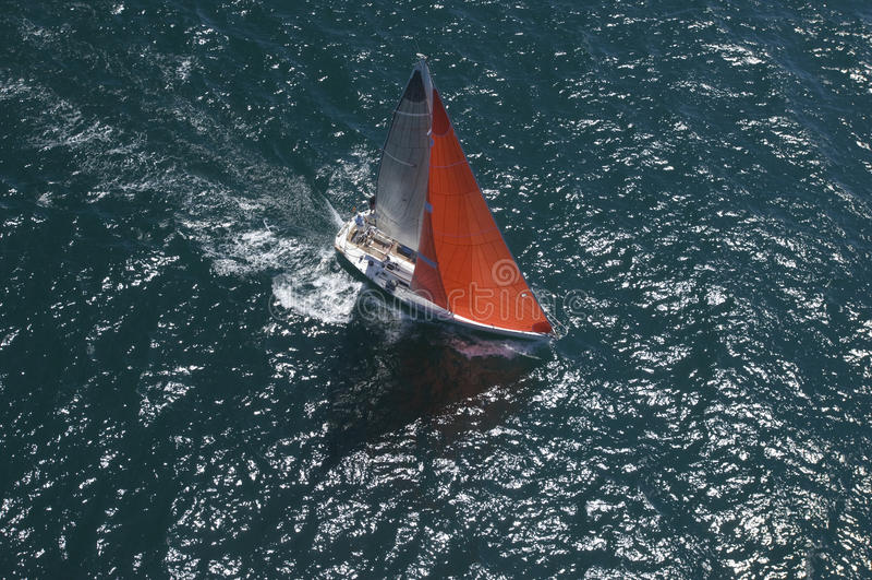 Yachten konkurrerar i Team Sailing Event royaltyfri bild