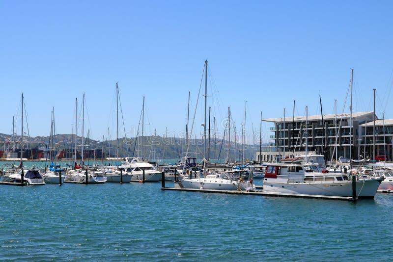 Yachten und Boote, Clyde Quay Wharf, Wellington, NZ stockbild