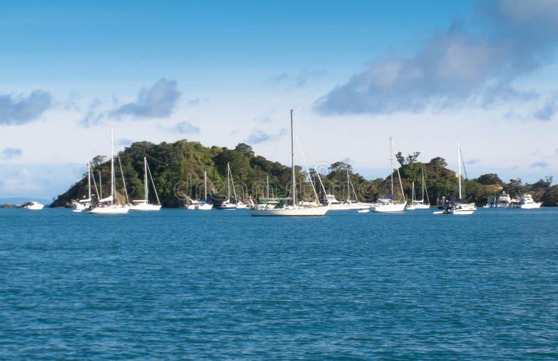 Yachts chez Rakino dans le Golfe de Hauraki image libre de droits