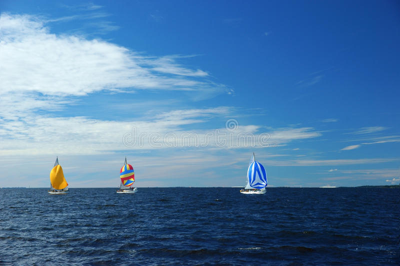 Yachts with colorful spinnakers. Yachting race. Sailing regatta. Three small yachts with colorful spinnakers in the sea on sunny windy day royalty free stock images