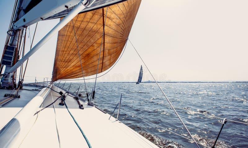 Yachts de bateau de navigation avec les voiles blanches images libres de droits