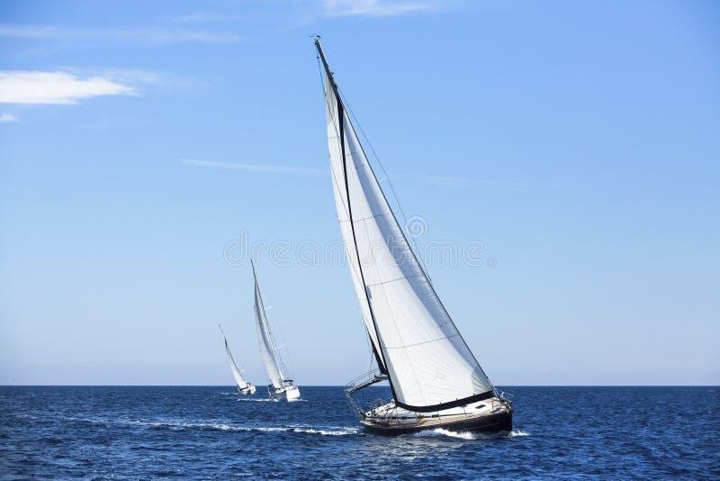 Yachts de bateau de navigation avec les voiles blanches photographie stock