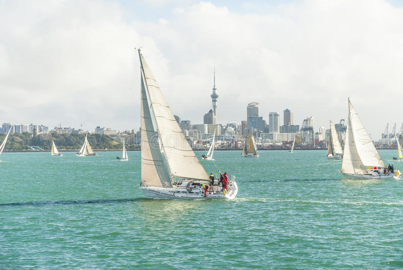 Yachts emballant dans le port d'Auckland images stock