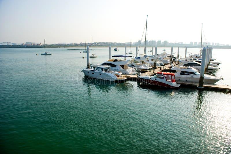 Yachts at marina. Luxury yachts moored at marina on a summers day stock photo