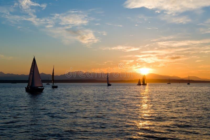 Yachts naviguant au coucher du soleil photos libres de droits