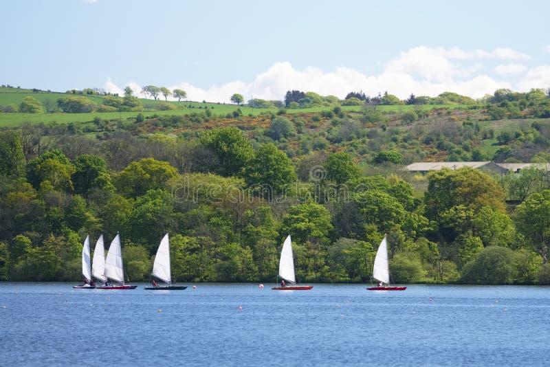 Yachts naviguant dans la voile colorée de lac d'été soufflée en vent à la course images stock