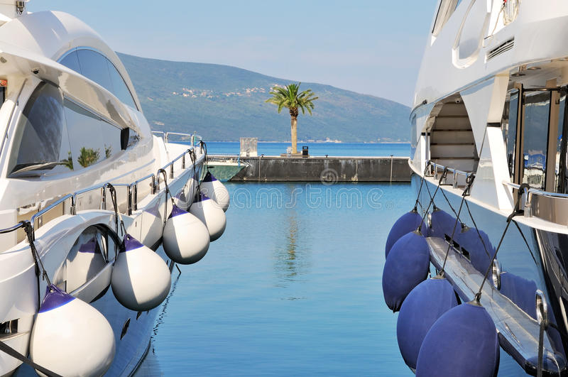 Yachts and and palm tree royalty free stock photography