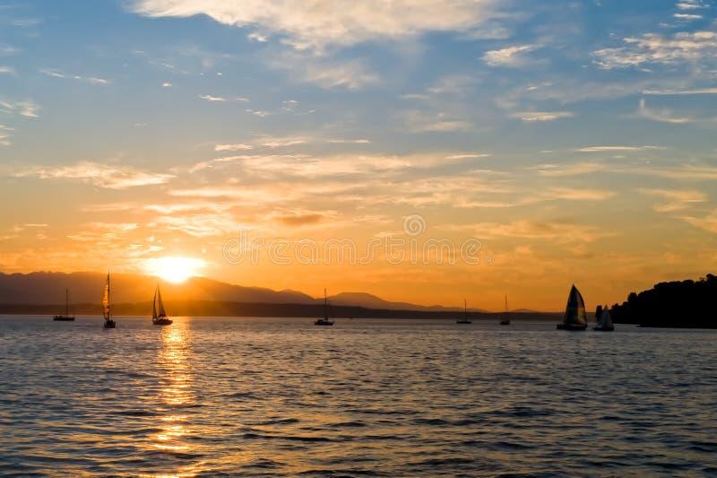 Yachts sailing at sunset royalty free stock photography