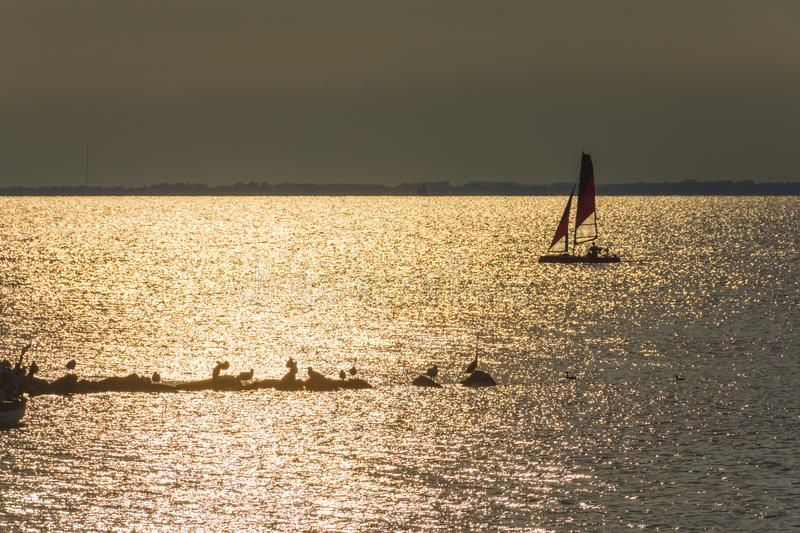 Yachts in the sea at sunset, Yachting. Romantic trip on luxury yacht during the sea sunset. stock photography