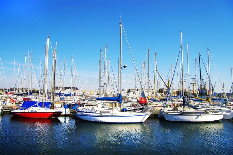 Yachts on sunny bay