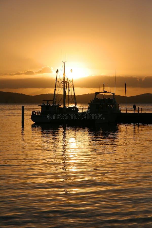 Yachts at sunrise royalty free stock image
