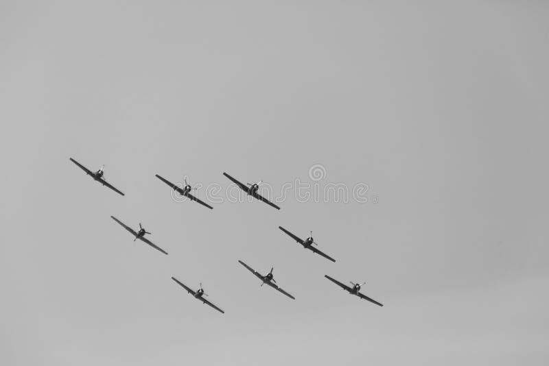 YAK-52 formation I images stock