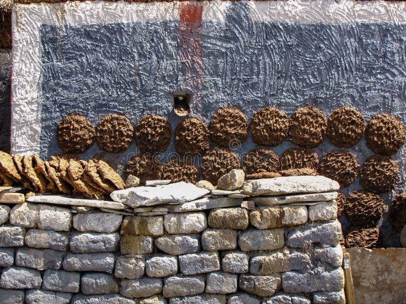 Yak paszteciki suszy na ścianach tibetan dom, Sakya, Tybet, Chiny zdjęcie stock