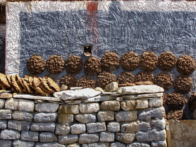 Yak patties drying on the walls of a tibetan house, Sakya, Tibet, China. Cow and yak dung drying on the walls of a tibetan house. This will be used as fuel in stock photo