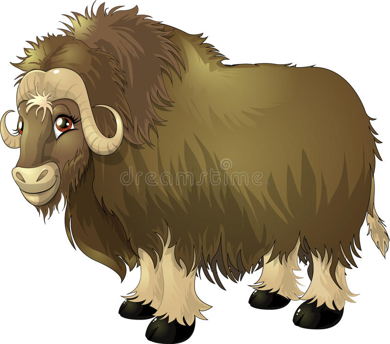 Yak. The separate picture without a background royalty free illustration