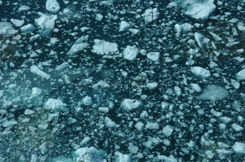 Yakutat-Bucht stockbild