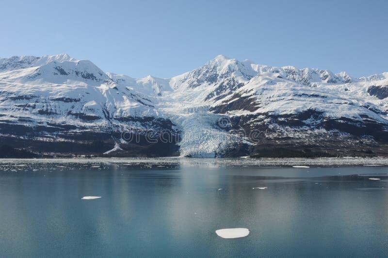 Yakutat-Bucht stockfotos