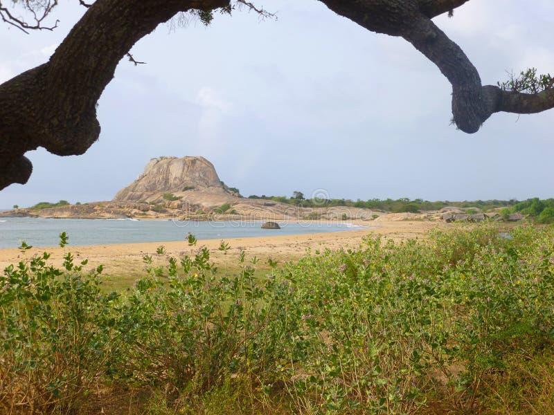 Yala nationell parcpanorama arkivbilder