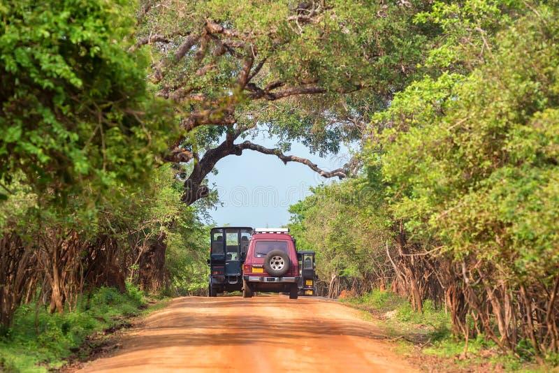 Download YALA, SRI LANKA - EM DEZEMBRO DE 2016: Nacional De Yala Imagem de Stock Editorial - Imagem de scenic, conservation: 107525869