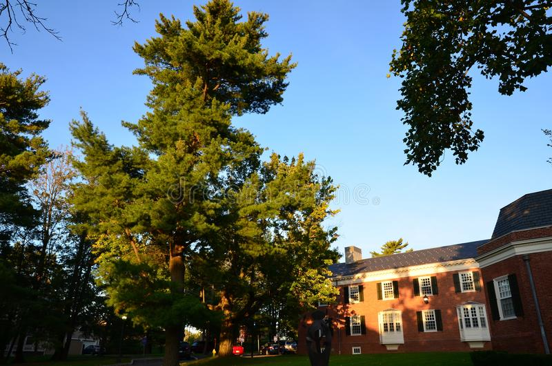 Yale Campus-Gebäude stockbild