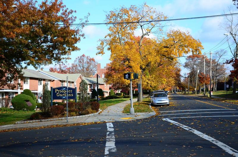 Yale Campus street in Fall royalty free stock photos