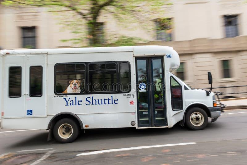 Yale Shuttle Bus em New Haven Connecticut foto de stock