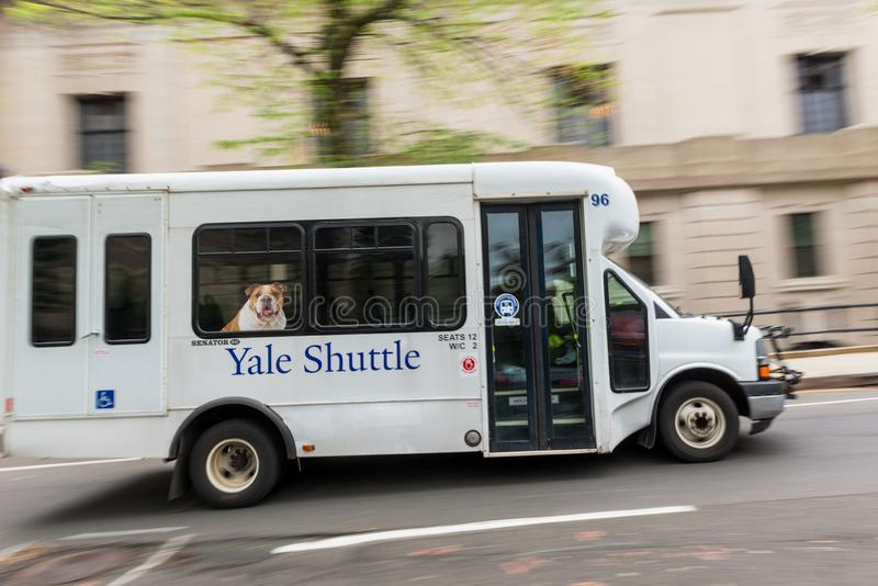 Yale Shuttle Bus in New Haven Connecticut stock photo