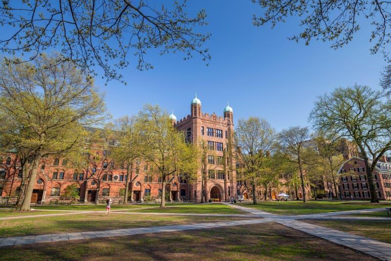 Yale universitaire gebouwen stock foto