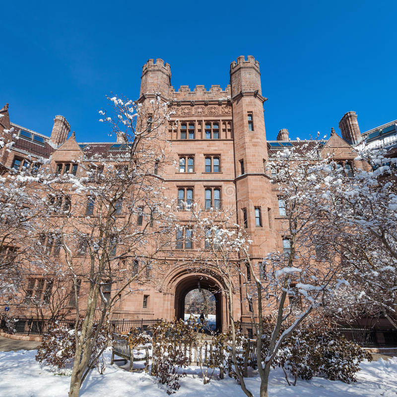 Yale universitet royaltyfria bilder