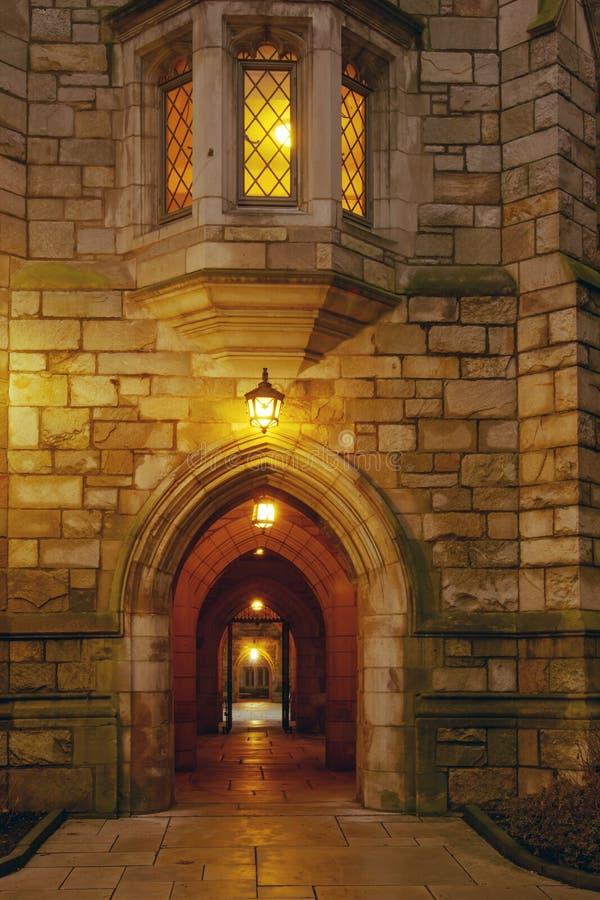 Yale universitetar royaltyfri bild
