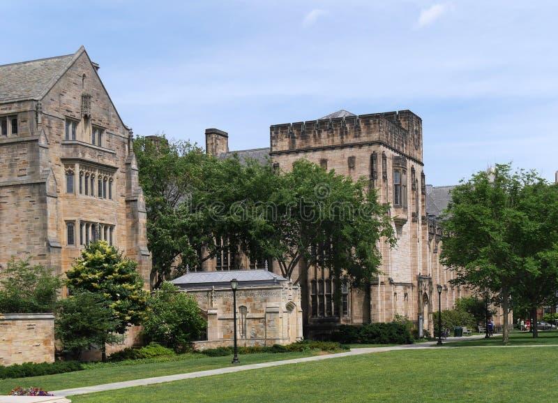 Yale University Campus imagen de archivo libre de regalías