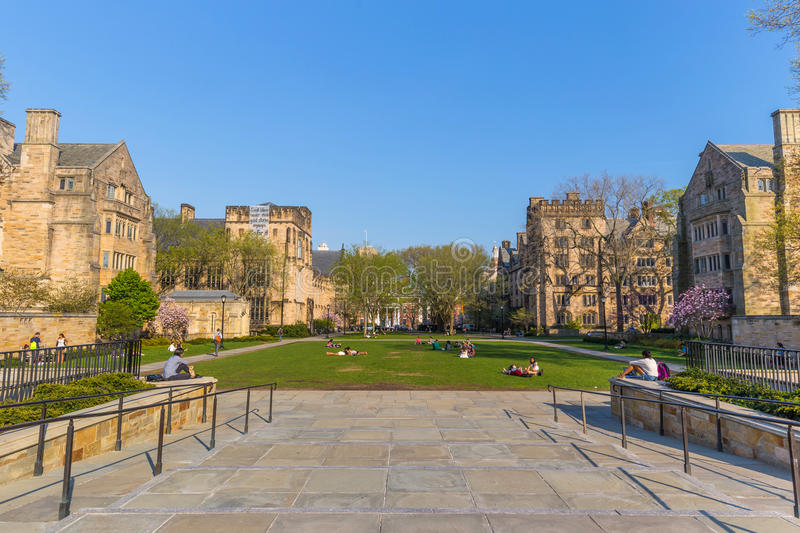 Yale University Campus royaltyfria bilder