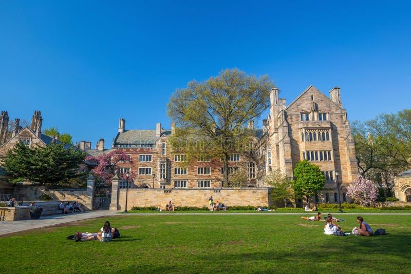 Yale University Campus stockbilder