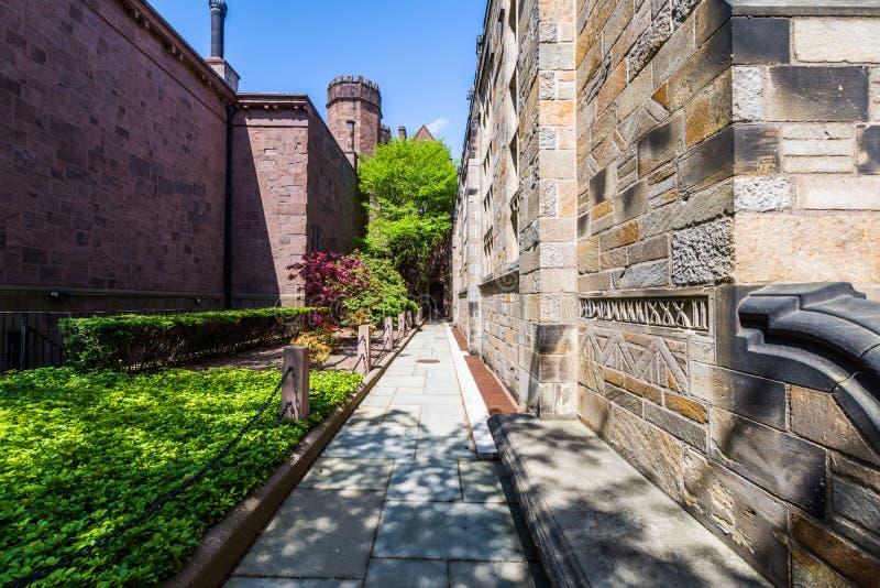 Yale University en New Haven Connecticut foto de archivo