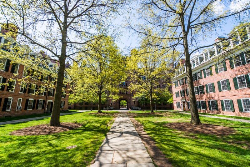 Yale University i New Haven Connecticut arkivbild