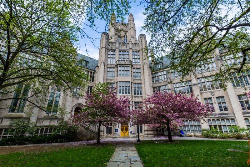 Yale University in New-Haven Connecticut lizenzfreies stockbild