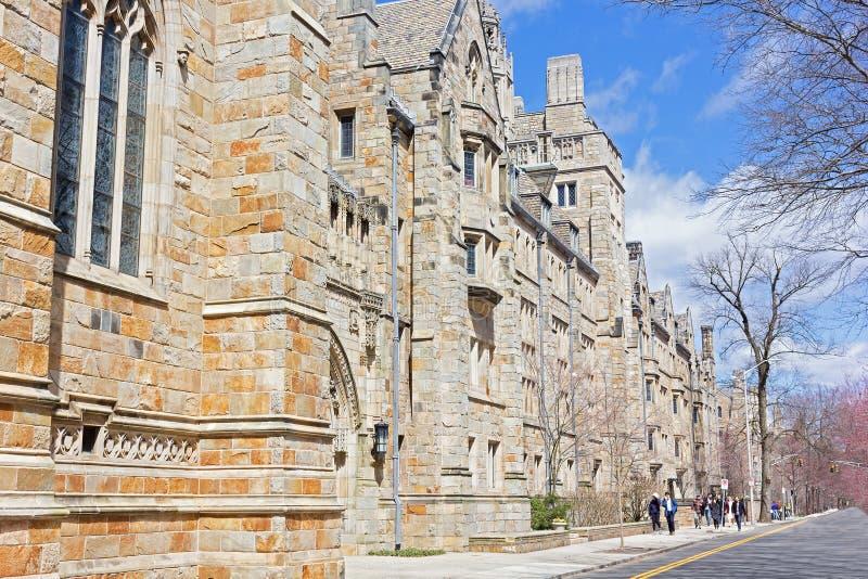 Yale University universitetsområde på våren royaltyfri bild