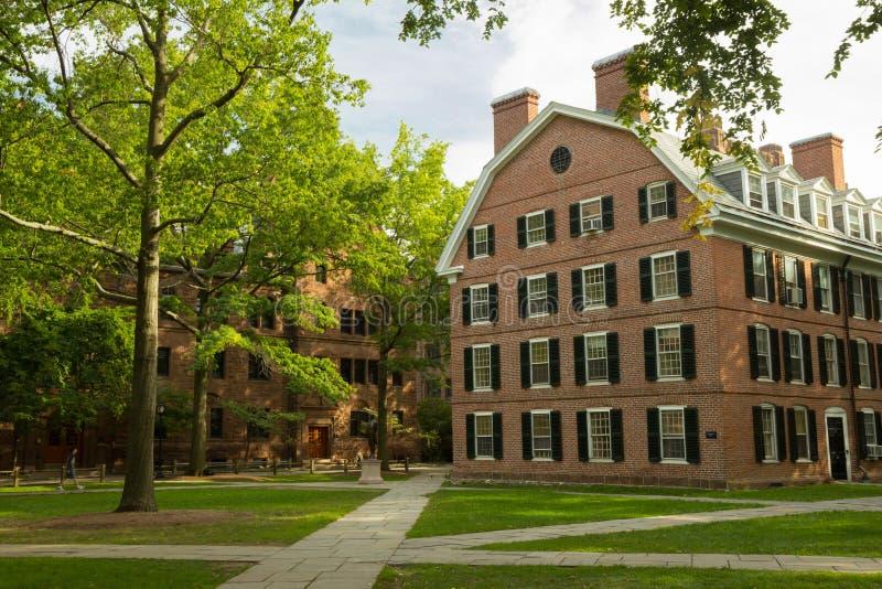 Yale University universitetsområdebyggnader royaltyfria foton