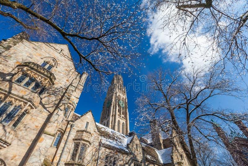 Yaleuniversiteit stock foto