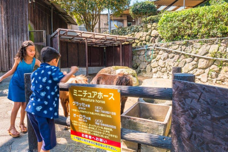Yama Jigokuor berghelvete i Beppu, Oita, Japan fotografering för bildbyråer