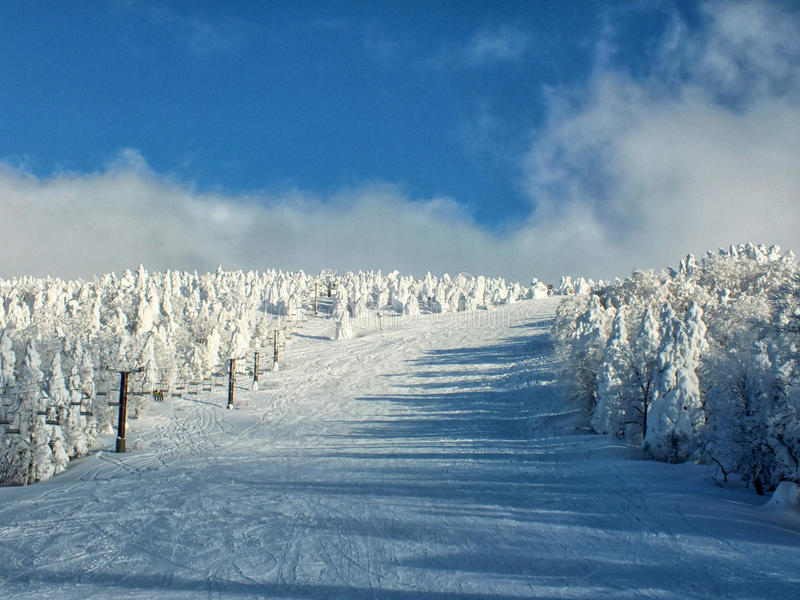 Yamagata frozen trees snow monsters and ski slope at mt.zao. Japan royalty free stock photography