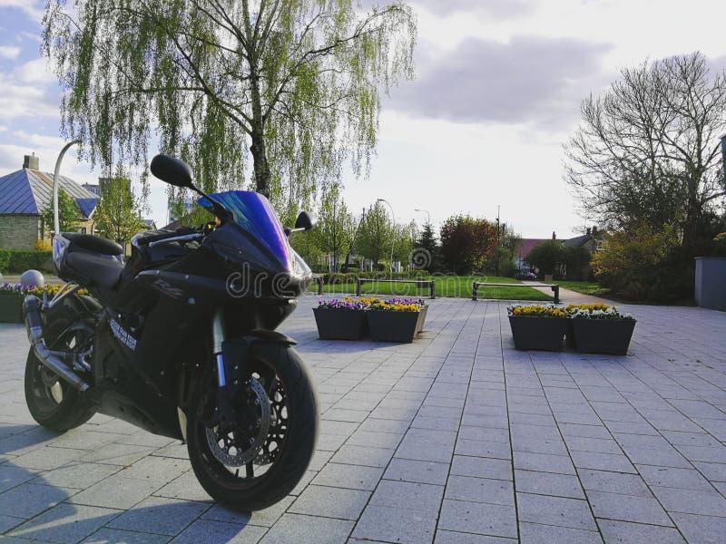 Yamaha stock photos