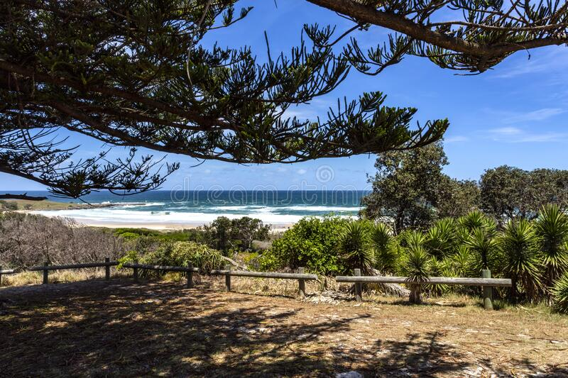 Yamba View of Pippi Beach royalty-vrije stock afbeelding