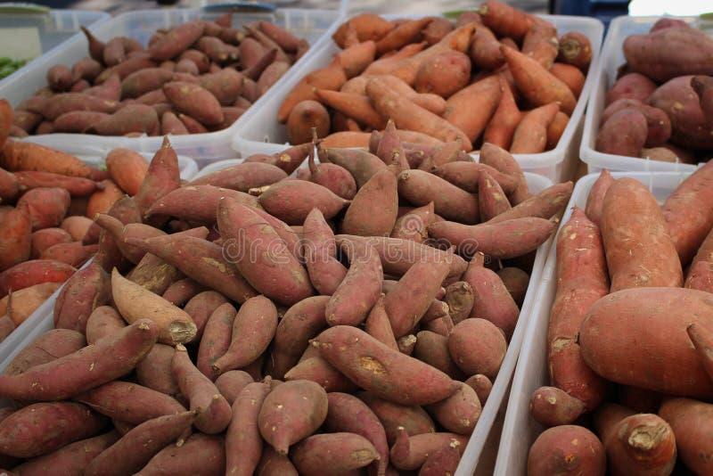 Yamswurzeln und süße Kartoffeln lizenzfreies stockfoto