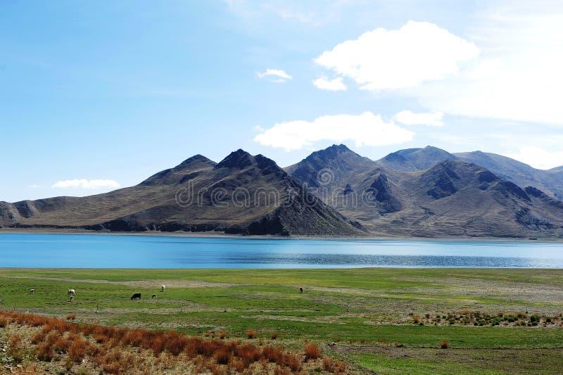 Yamzho jezioro, Yamdrok jezioro obrazy stock
