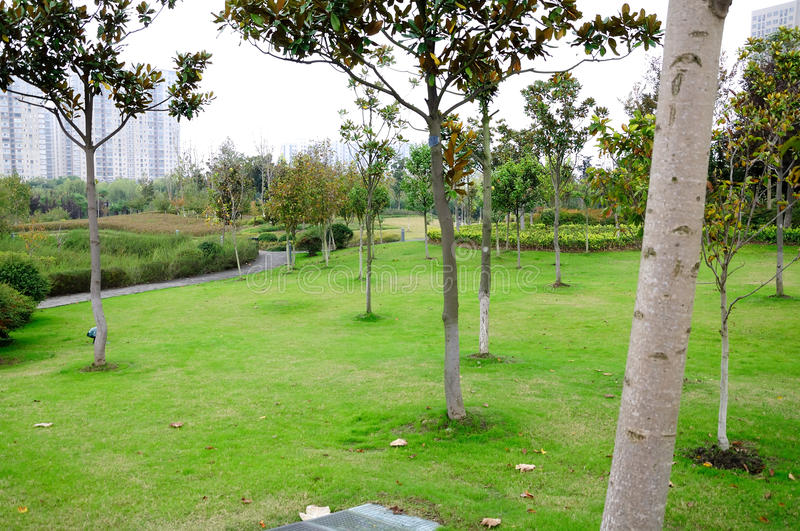 Yandu park scenery royalty free stock photo