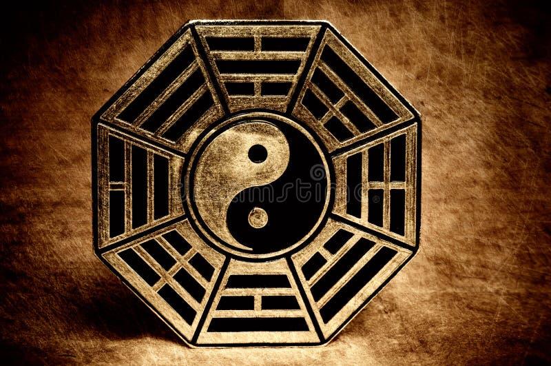 yang yin fotografering för bildbyråer